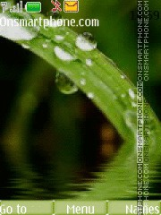 Скриншот темы Green Drops