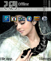 Asin 03 theme screenshot