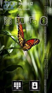 Butterfly 31 es el tema de pantalla