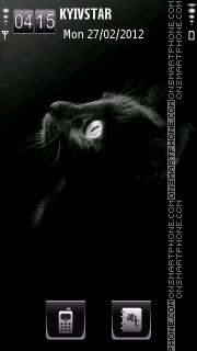 Black kitten theme screenshot
