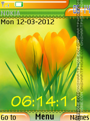 Spring Flowers 05 theme screenshot