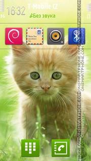Kitten 10 tema screenshot