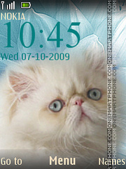 Kitty theme screenshot