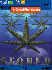 Cannabis 04 es el tema de pantalla