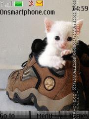 Cute Kitty 09 Theme-Screenshot