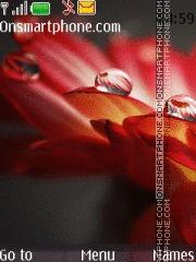 Macro Drops Photo theme screenshot