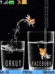 Orkut to Facebook theme screenshot