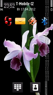 Orchid 02 theme screenshot