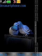 Love Pigeons tema screenshot
