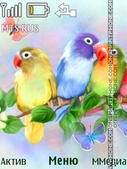 Parrots theme screenshot