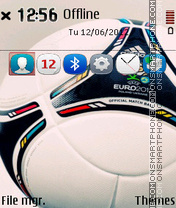 Euro 2012 - Poland and Ukraine theme screenshot