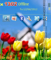 Yellow And Red Tulips theme screenshot