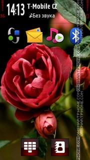 Rose Red theme screenshot