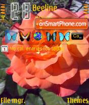 Rose 04 theme screenshot