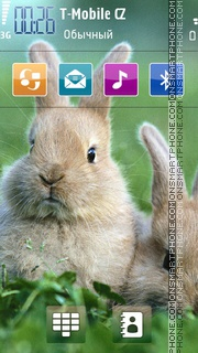 Rabbit 2012 theme screenshot