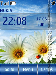Summer Flowers tema screenshot