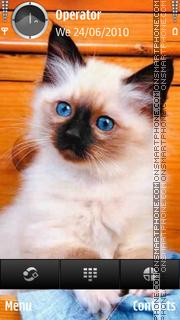 Скриншот темы Cute Cat