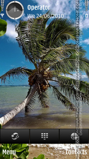 Tropic Palm theme screenshot