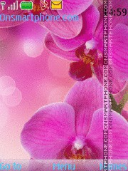 Orchids tema screenshot