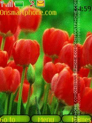 Tulips theme screenshot