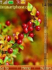 Berries tema screenshot