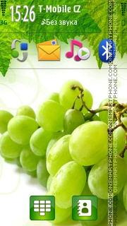 Grapes 01 theme screenshot