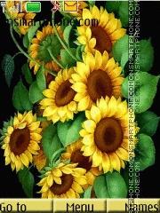 Скриншот темы Sunflowers