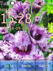 Gladioluses theme screenshot