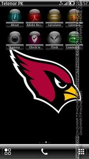 Hawk es el tema de pantalla