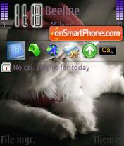 Catsss theme screenshot