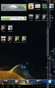Golden Fish 01 theme screenshot