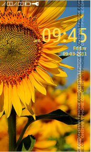 Sunflower 12 theme screenshot