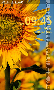Sunflower 13 theme screenshot
