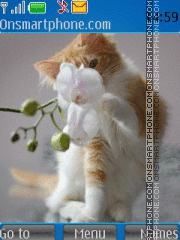 Kitten 11 theme screenshot
