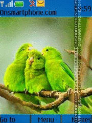 Green Parrots theme screenshot