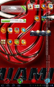 Miami Heat 01 tema screenshot