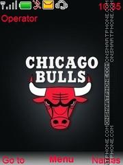 Chicago Bulls tema screenshot