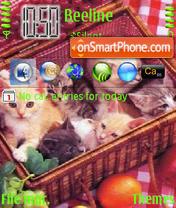 Kitten 01 theme screenshot