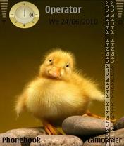 Sweet Duck es el tema de pantalla
