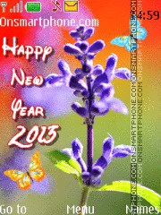 Happy New Year 2013 02 theme screenshot