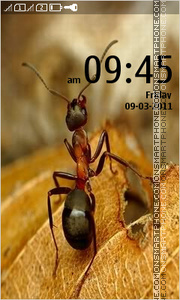 Ant 01 theme screenshot