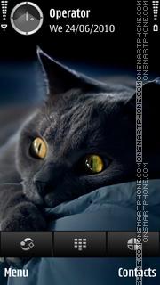 Black Cat es el tema de pantalla