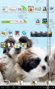 Скриншот темы Puppy 08