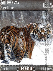 Tiger winter Theme-Screenshot