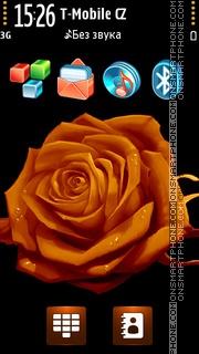Orange Rose 05 tema screenshot