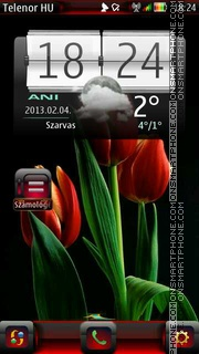 Tulipan es el tema de pantalla