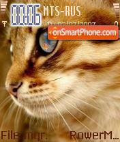 Cat 06 theme screenshot