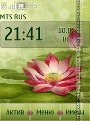 Lotus Theme-Screenshot