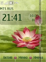 Lotus es el tema de pantalla