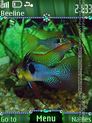 Colorful aquarium theme screenshot